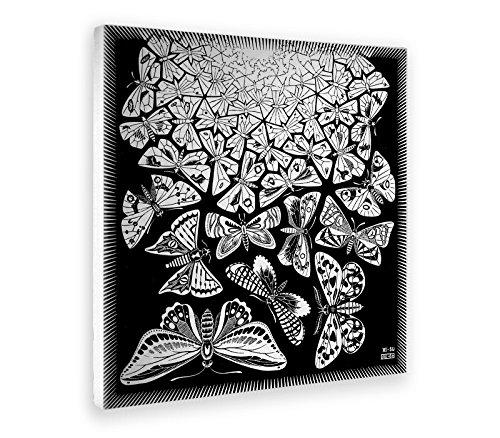 Giallobus - Cuadro - Impresion EN Lienzo - Escher - Mariposas - 100 x 100 CM